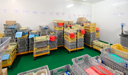 protection stockage contre les nuisibles